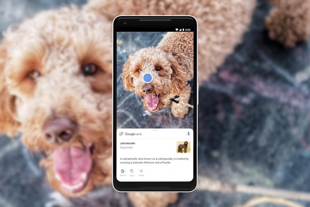 Google Lens Visual Search - Digital marketing Trend 2021 - iRISEmedia Digital Marketing Agency Toronto